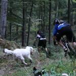 mountainbike tout ilfeld