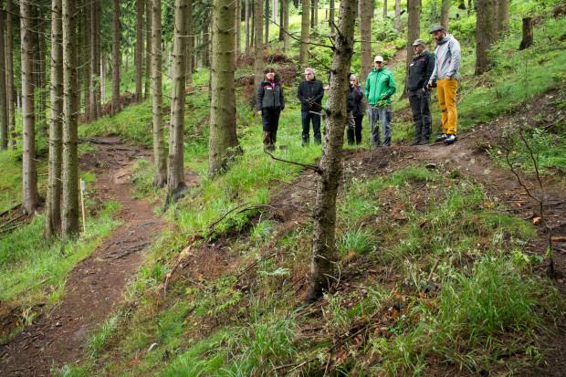 harz, nationlapark, mtb, mountainbike, trails
