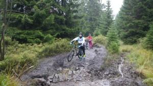 MTB Sport im Harz